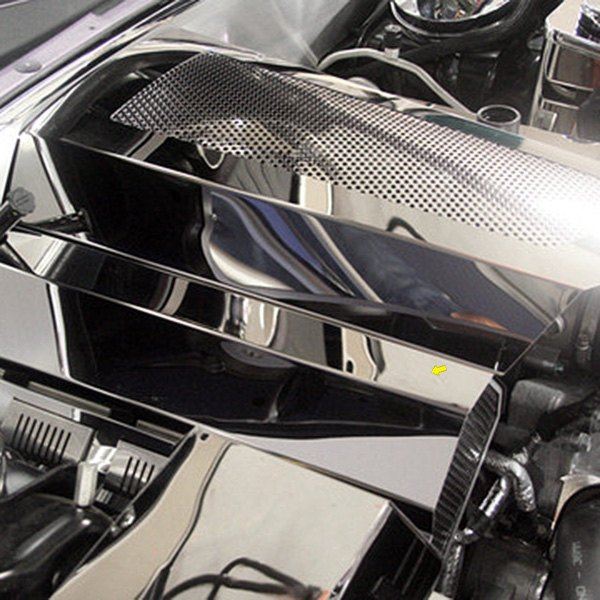 Dodge Challenger 2016 Polished Fuel Rail Covers