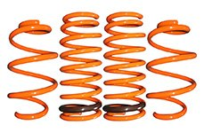 GT-F Lowering Springs