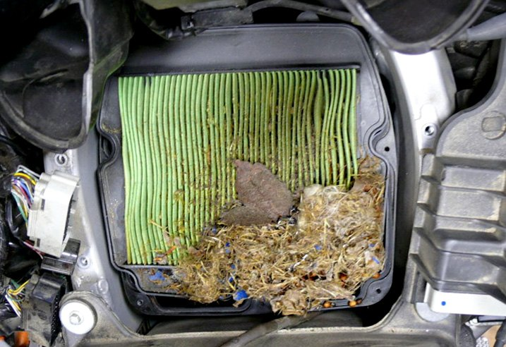 Excessively Clogged Air Filter