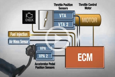 Throttle Control System