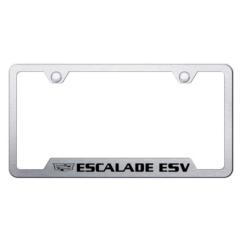 Autogold® GF.ESV3.ES - Brushed License Plate Frame with Laser Etched ...