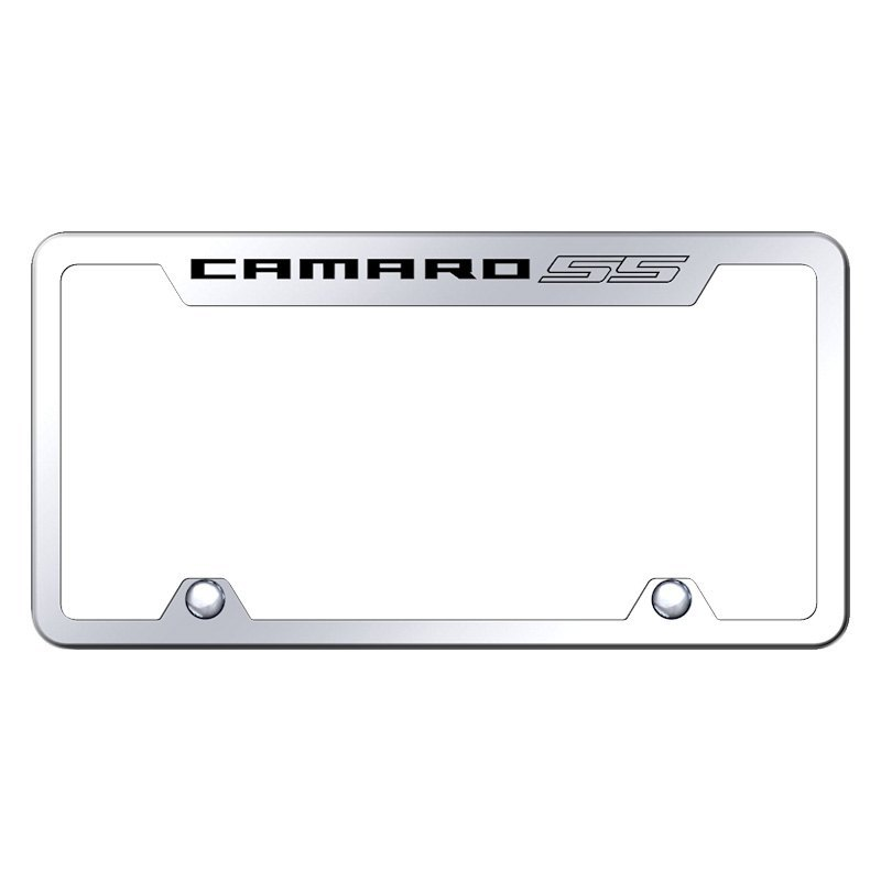 Autogold® TF.CMRSS.EC - Truck Chrome License Plate Frame with Laser ...