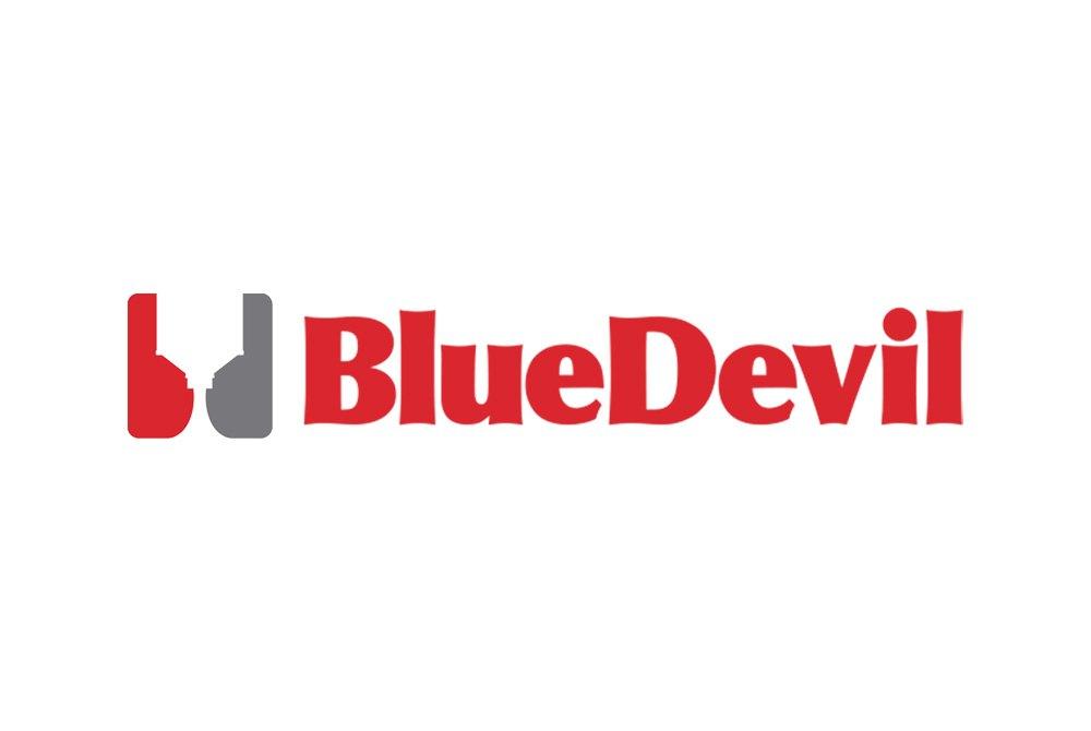 Bluedevil 38386 32 Oz Head Gasket Sealer
