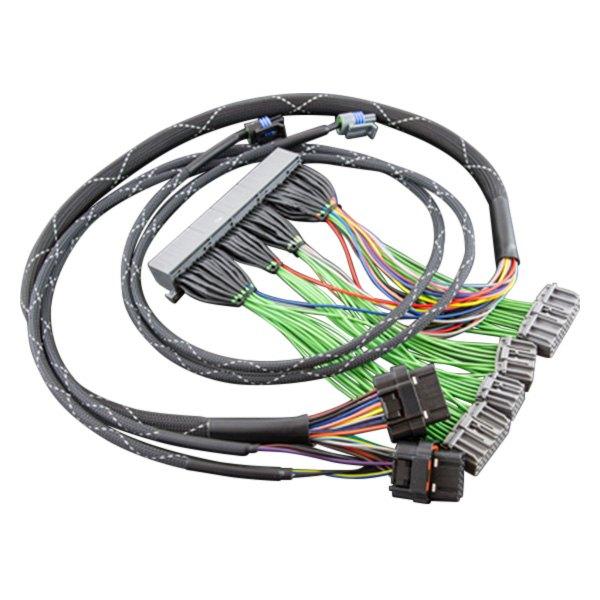 Boomslang® - Haltech Elite™ Plug and Play Harness on