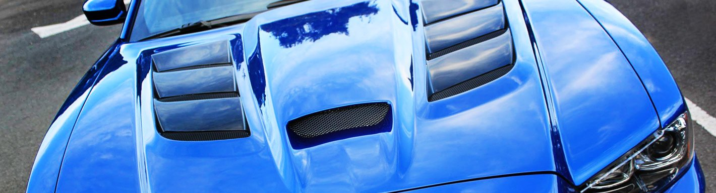 Honda Civic Si Custom Hoods - 2010