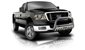Ford F-150 Grille Guards