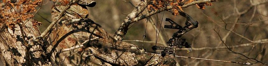 RealTree Hardwoods™ Camouflage Pattern