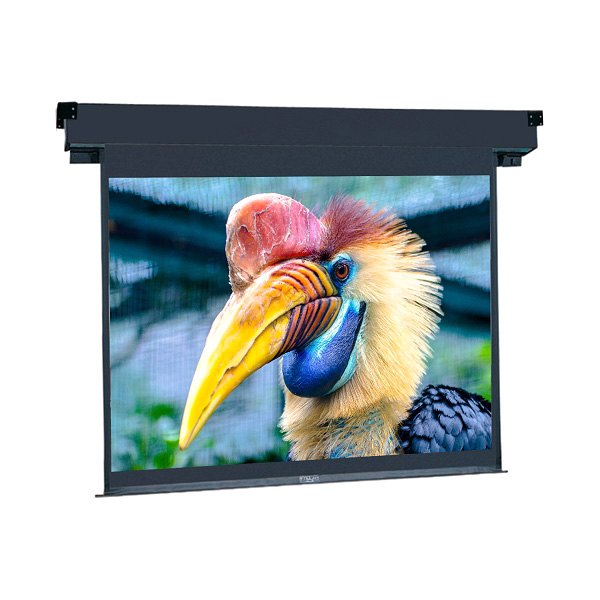 da lite projection screen For nearly 100 years, dalite's comprehensive line of high quality projection screens have been a best seller da-lite brand screens are american made in indiana.
