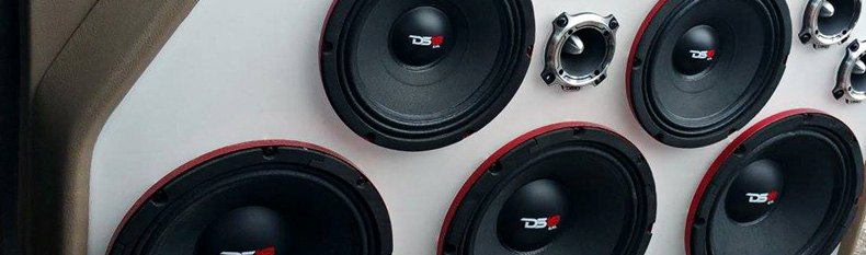 DS18 Car Audio
