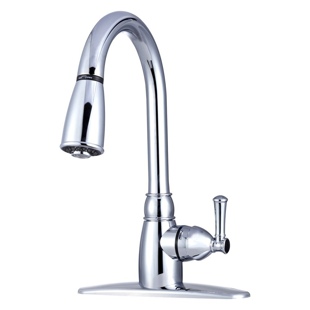 Dura df pk160 cp rv kitchen pull down faucet with lever - Rv kitchen sink faucet ...