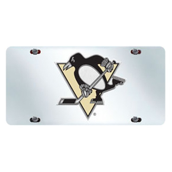 Sport NHL Chrome License Plate With
