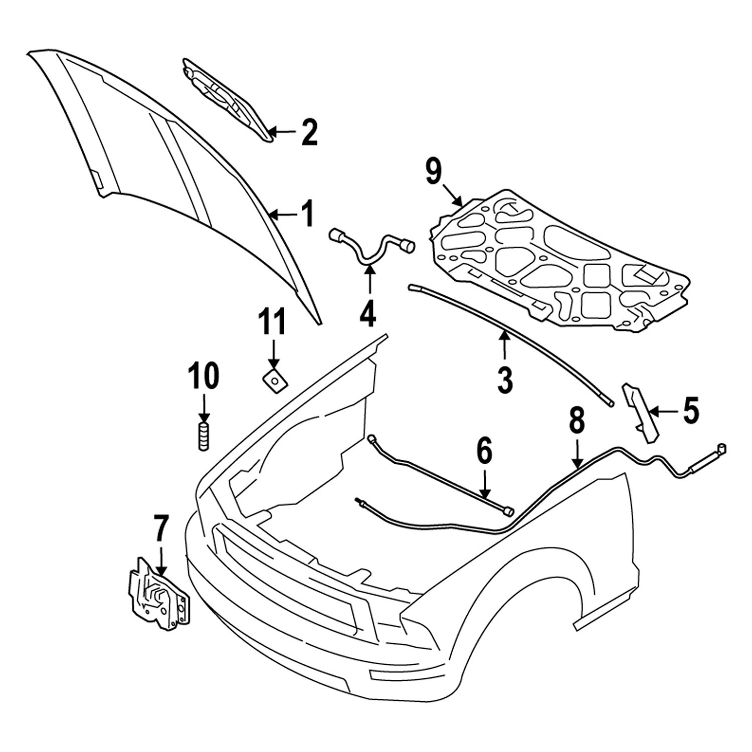 Replacement Parts Automotive Genuine Ford 6R3Z-16916-A Hood ...