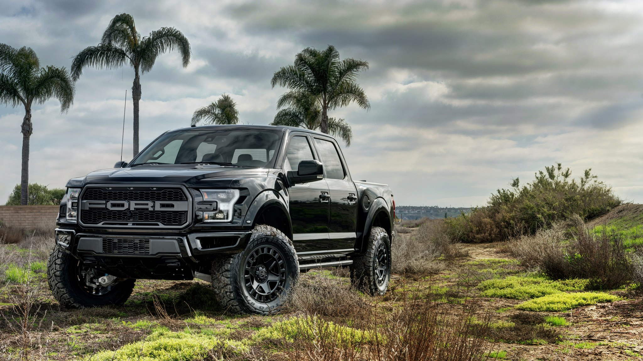 2017 Ford F150 Raptor With Black Rhino Offroad Rims Photo By Tsw
