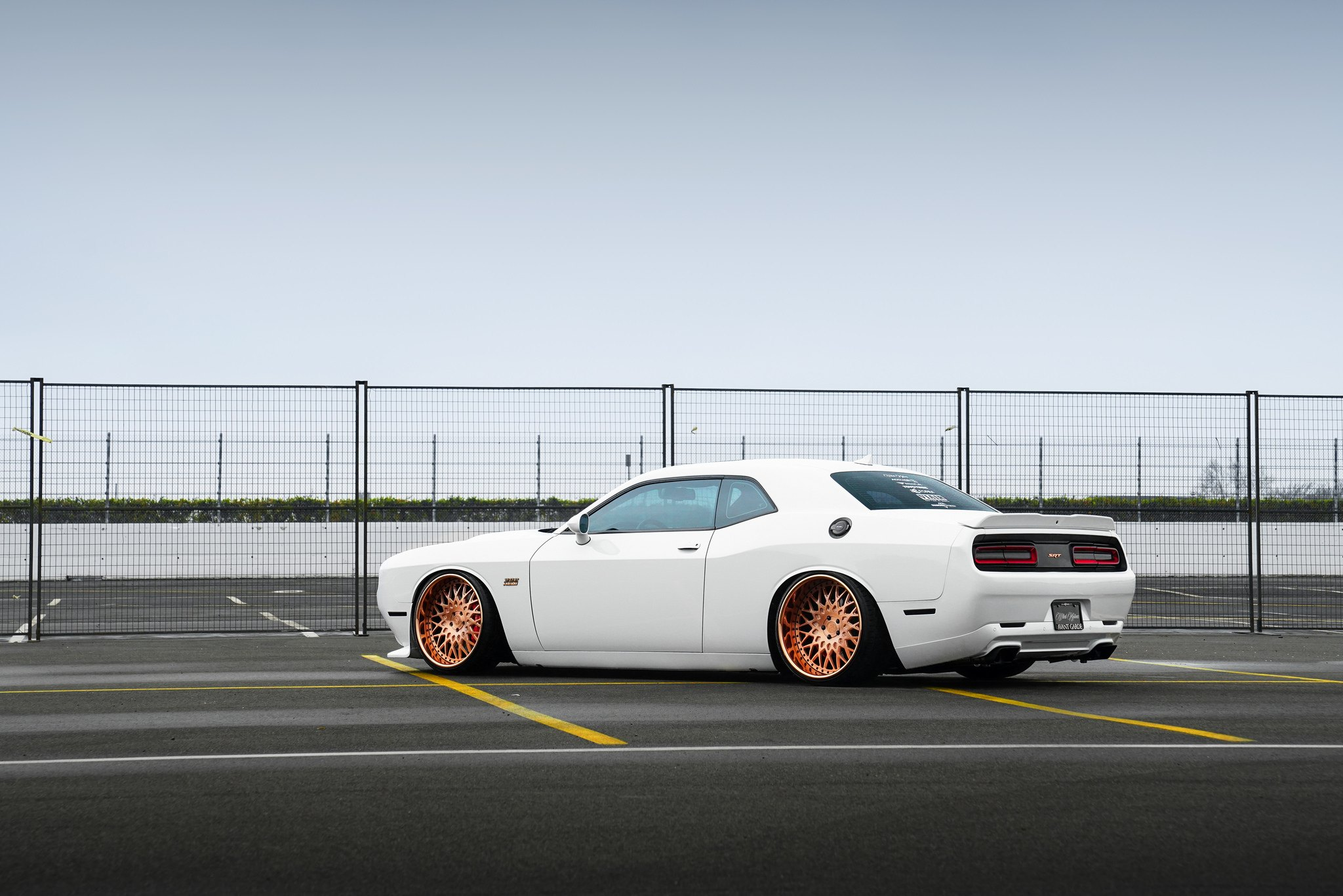 Slammed White Dodge Challenger Fitted With Rose Gold Avant Garde