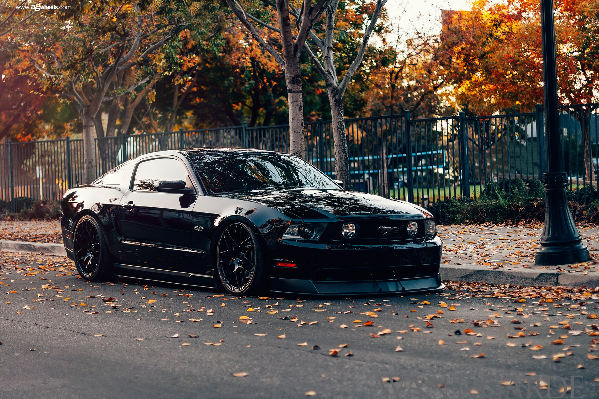 Customized Mustang >> Stealthy Black Stanced Ford Mustang 5.0 Customized to Impress — CARiD.com Gallery