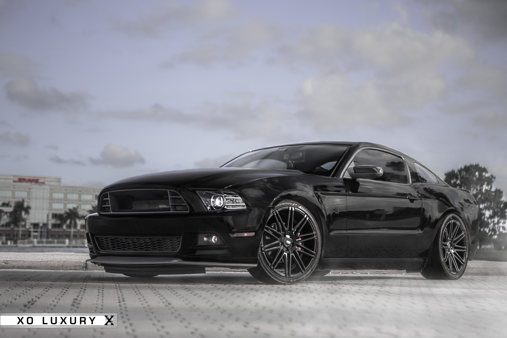 Black Mustang With Roush Ground Effects and - Photo by XO Luxury