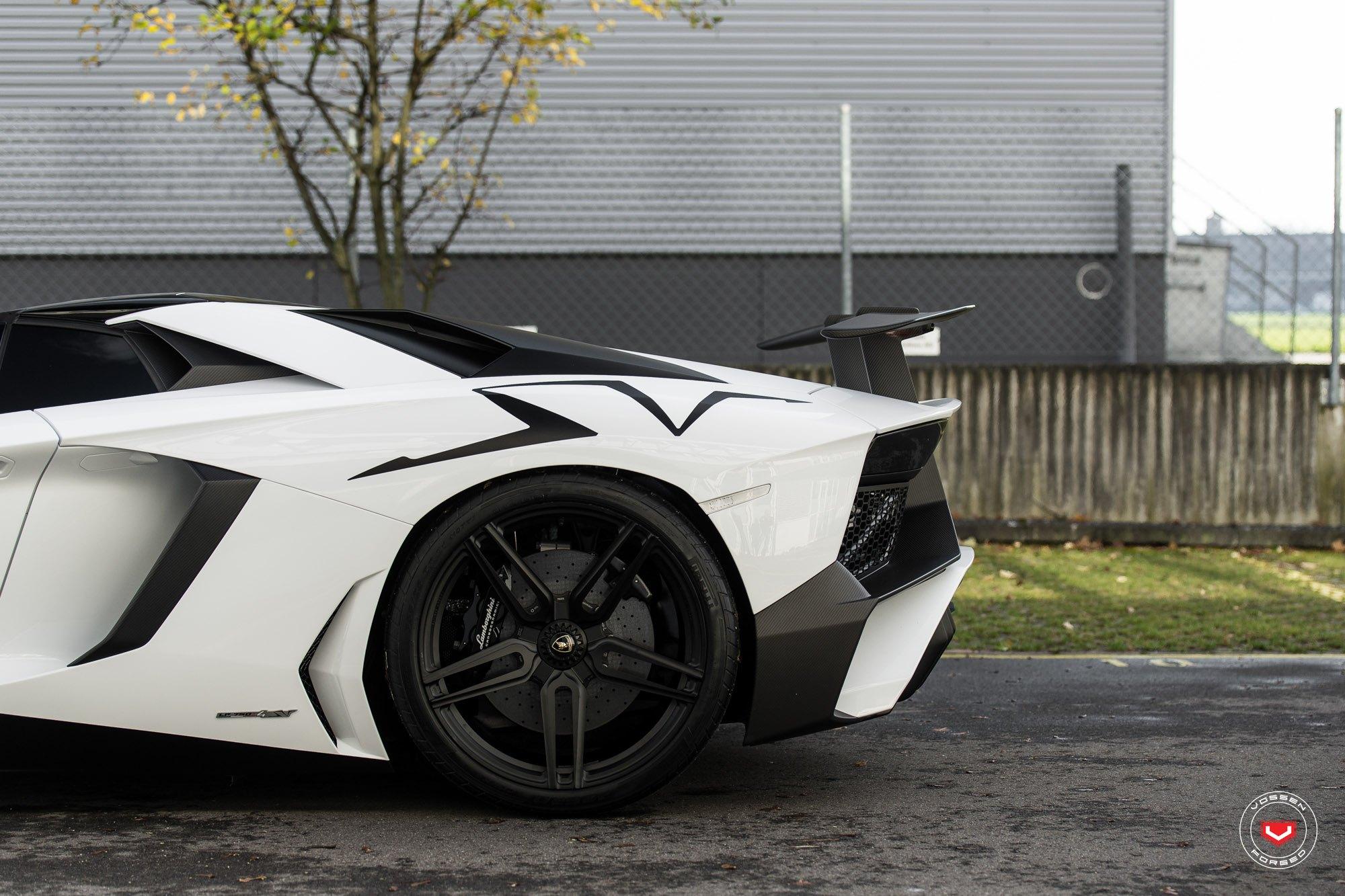 Black And White Exterior Color Solution For Custom Lamborghini