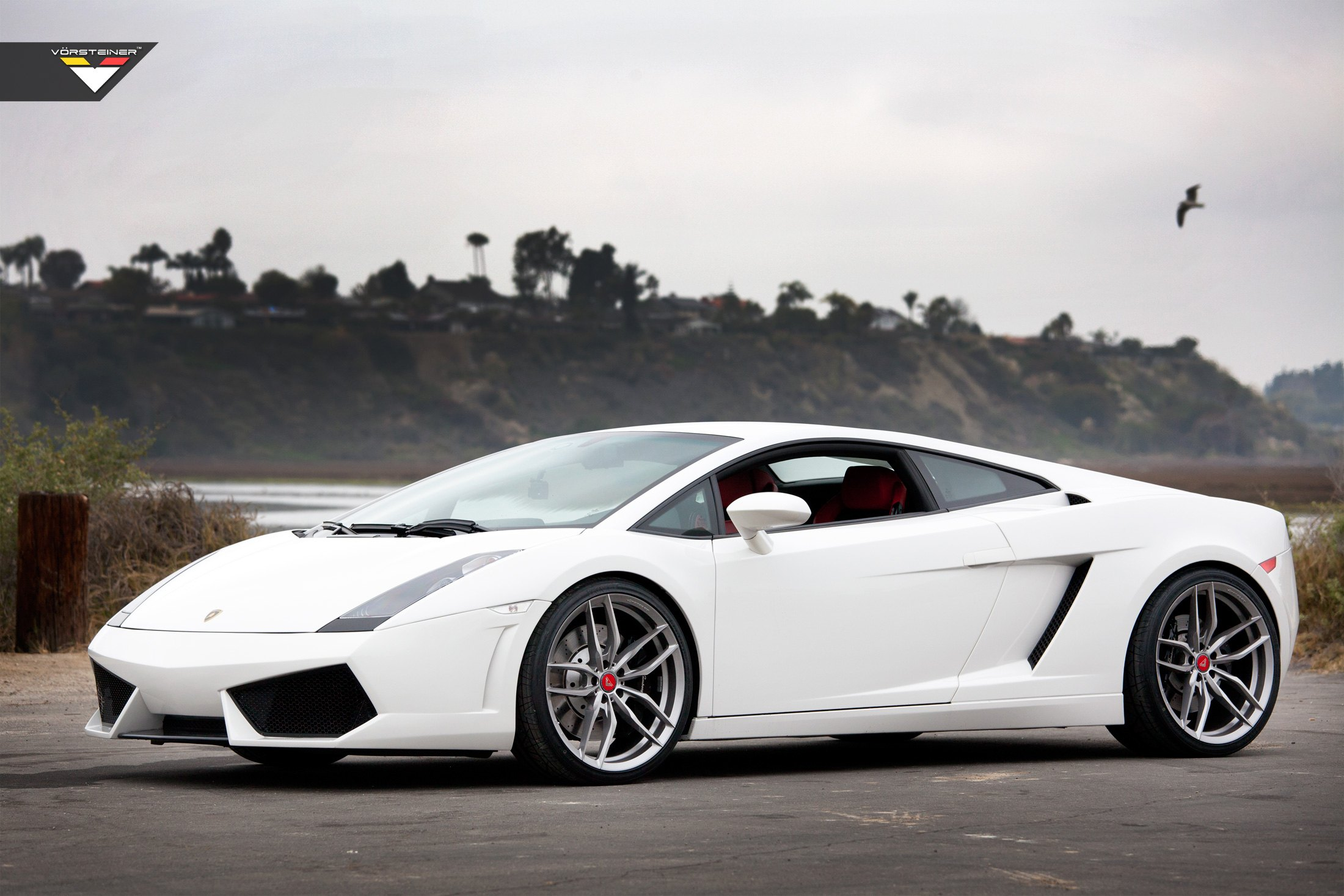 White Lamborghini Gallardo Looking Like An Angel With Mercury Silver
