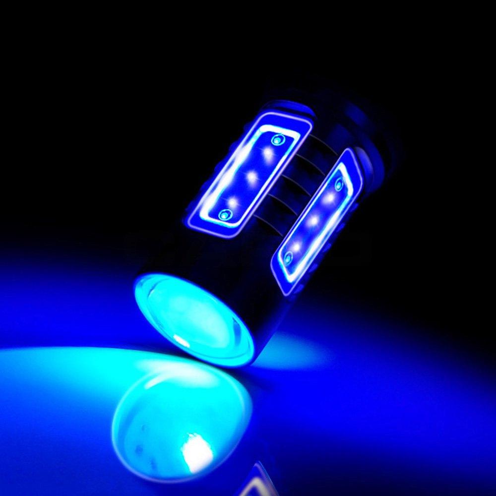 BMW 3-Series 2009 Daytime Running Light LED Bulbs