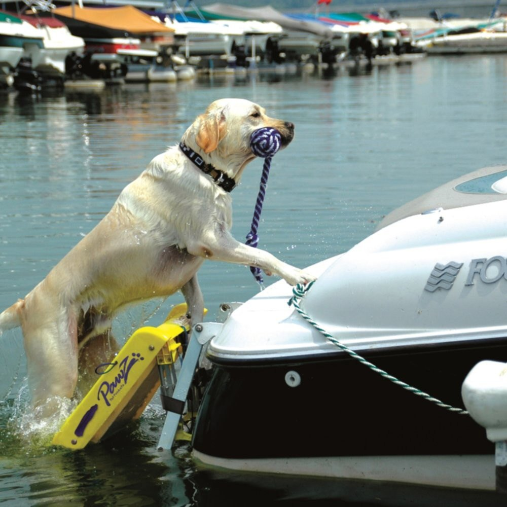 Paws Aboard 174 5200 Doggy Boat Ladder