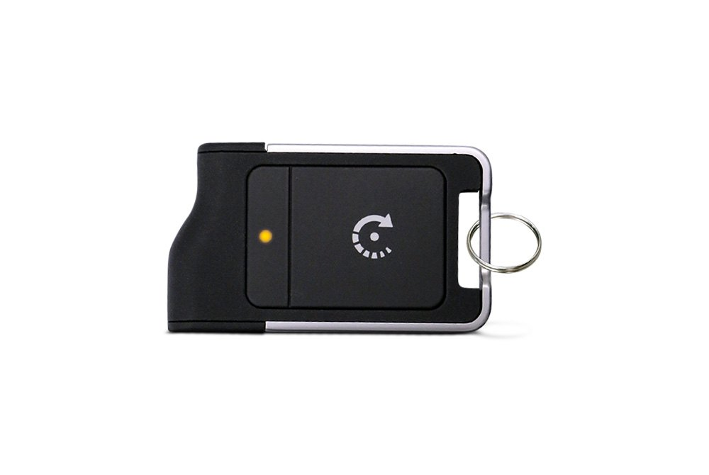 Python Alarm™ | Automotive Security & Remote Start Systems — CARiD com