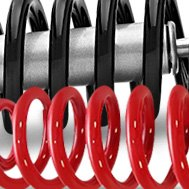 Rancho® - Suspension Strut Coil Spring Assembly