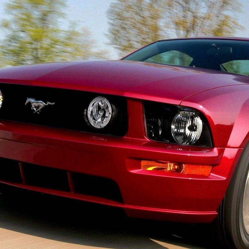 2005 Ford Gt Interior: Ford Mustang GT With Deluxe And Premium Package