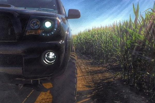 Spyder® - Toyota Tacoma 2008 Black Halo Projector LED ...