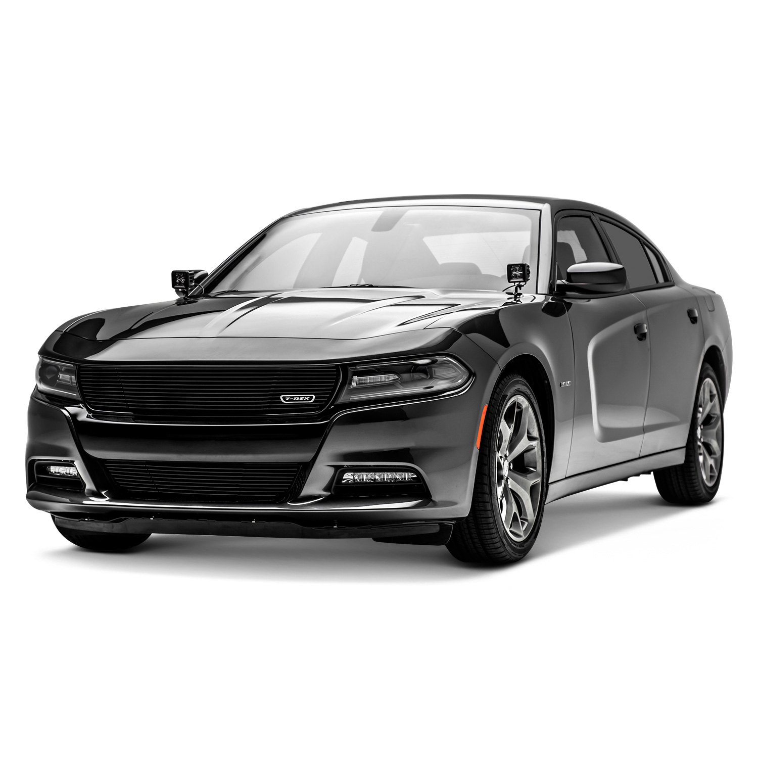 t rex dodge charger 2015 2017 1 pc laser black horizontal billet grille. Black Bedroom Furniture Sets. Home Design Ideas