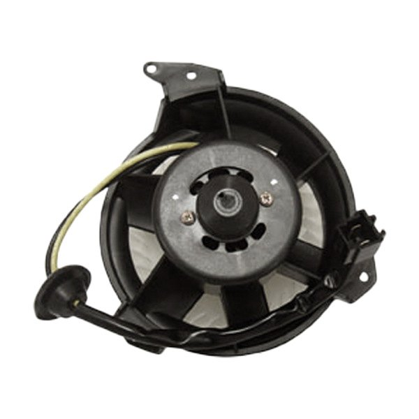 Tyc dodge grand caravan 1996 2000 hvac blower motor for Blower motor dodge caravan