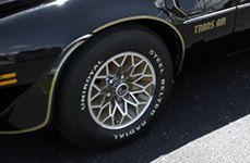 UNIROYAL® - STEEL BELTED RADIAL Tires on Pontiac Firebird Trans Am