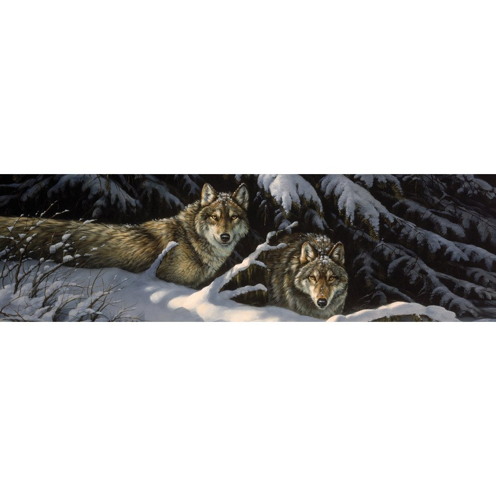 Vantagepoint black timber wolves rear window graphic for Window graphics